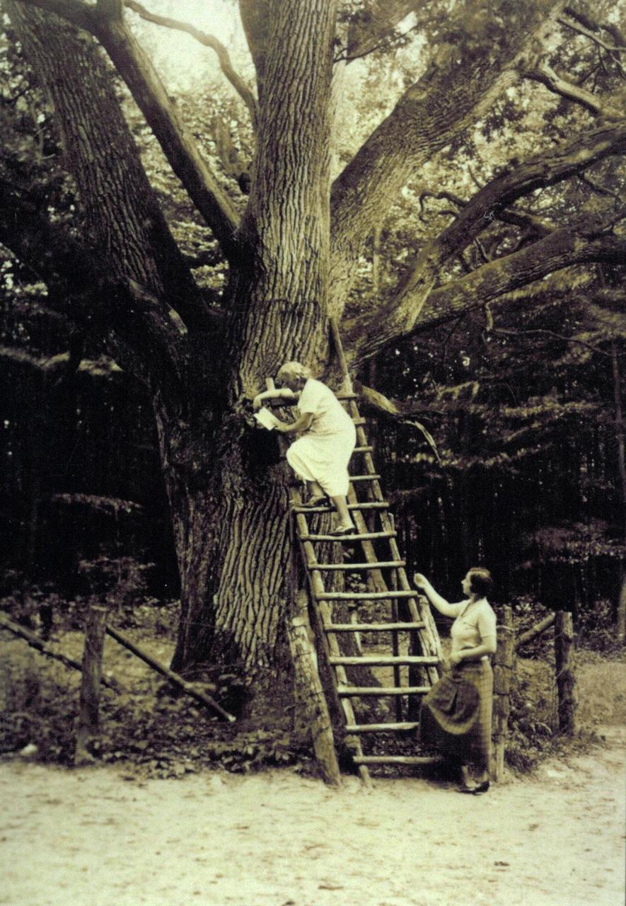 Due donne salgono la scala negli anni '30