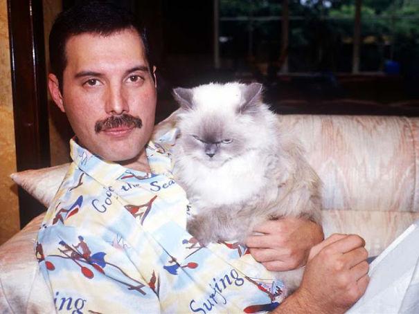 Freddie Mercury con uno dei suoi gatti