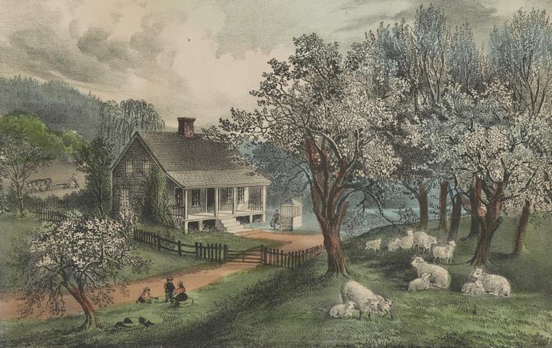 Una tenuta rurale americana nel 1869