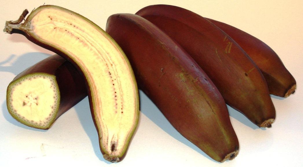 Banane rosse